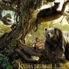 stáhnout Kniha džunglí