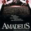 stáhnout Amadeus