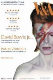 stáhnout David Bowie je…