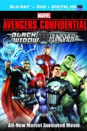 stáhnout Avengers Confidential: Black Widow & Punisher