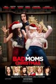 stáhnout Matky na tahu o Vánocích / A Bad Mom's Christmas