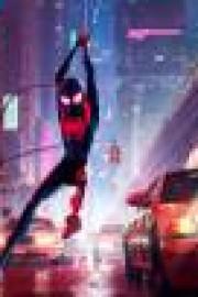 stáhnout Spider-Man: Paralelní světy / Spider-Man: Into the Spider-Verse